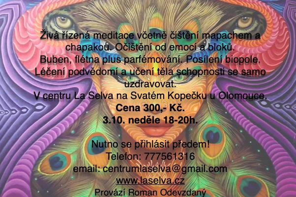 Šamanská meditace – léčení 3.10. neděle 18-20h